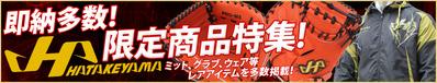 即納多数!ハタケヤマ限定商品特集!!