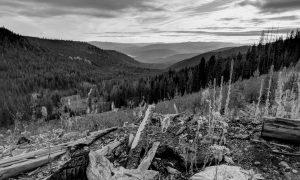Princeton-Canadian-Adventures-Hunting-Nature-Fall.jpg