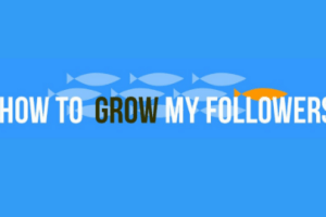 How To Grow Your Followers On Instagram - The Beginner's Guide To Instagram