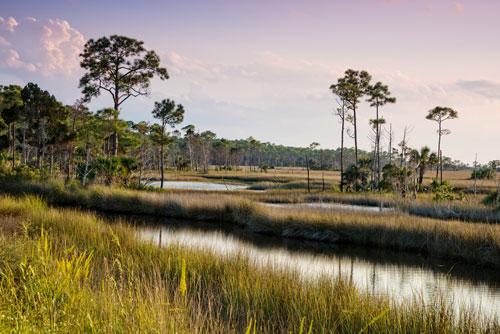 Top 10 Reasons to Visit Florida