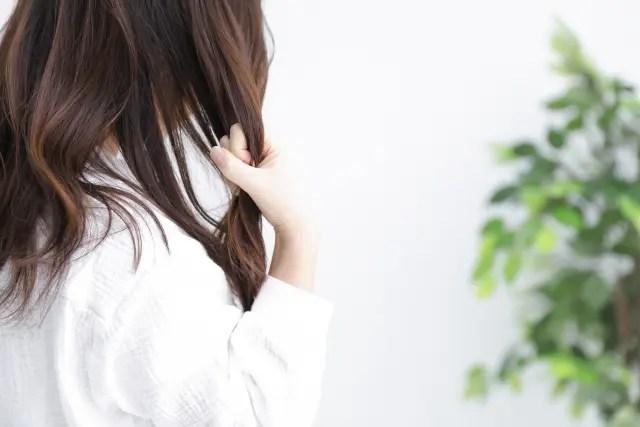 くせ毛でお困りの方におすすめするシャンプーの選び方を美容師が解説!