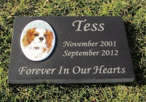 Engraved Color Photographic Granite Pet Memorial