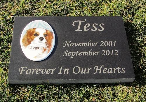 Engraved Color Photographic Granite Pet Memorial
