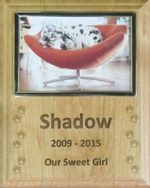 Wooden Plaque With Picture Frame