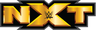 WWE NXT 22nd July (2015) Web-HD 480P 200MB