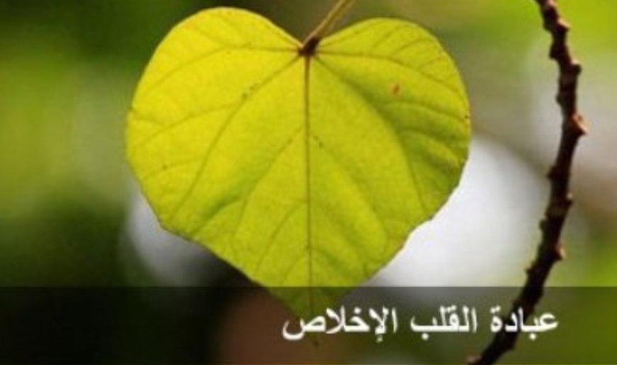 كتاب العبادات القلبية لمحمد أشرف صلاح