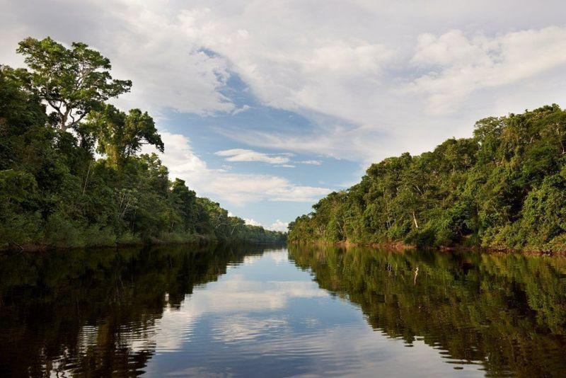 Áreas Naturales Protegidas en la selva del Perú