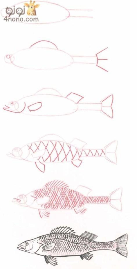 طريقه رسم عالم البحار بالصور