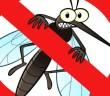 نصائح ووصفات للتخلص من الناموس في الصيف