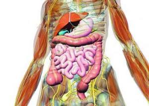 علامات تدل على أن جسمك مليء بالسموم