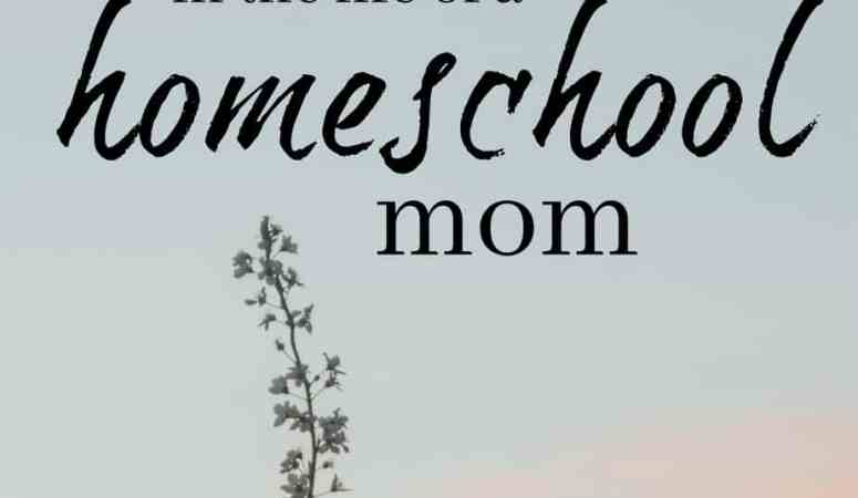 The 3 Stages in the Life of a Homeschool Mom