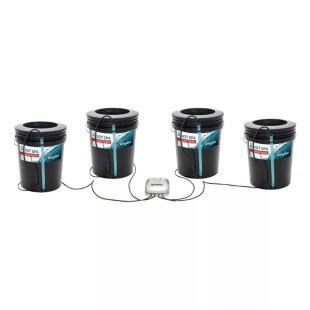 Root Spa: 4 Bucket System