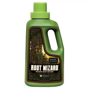 root_wizard_1QT