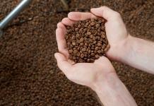 Mit Kaffeebohnen gefüllte Hände