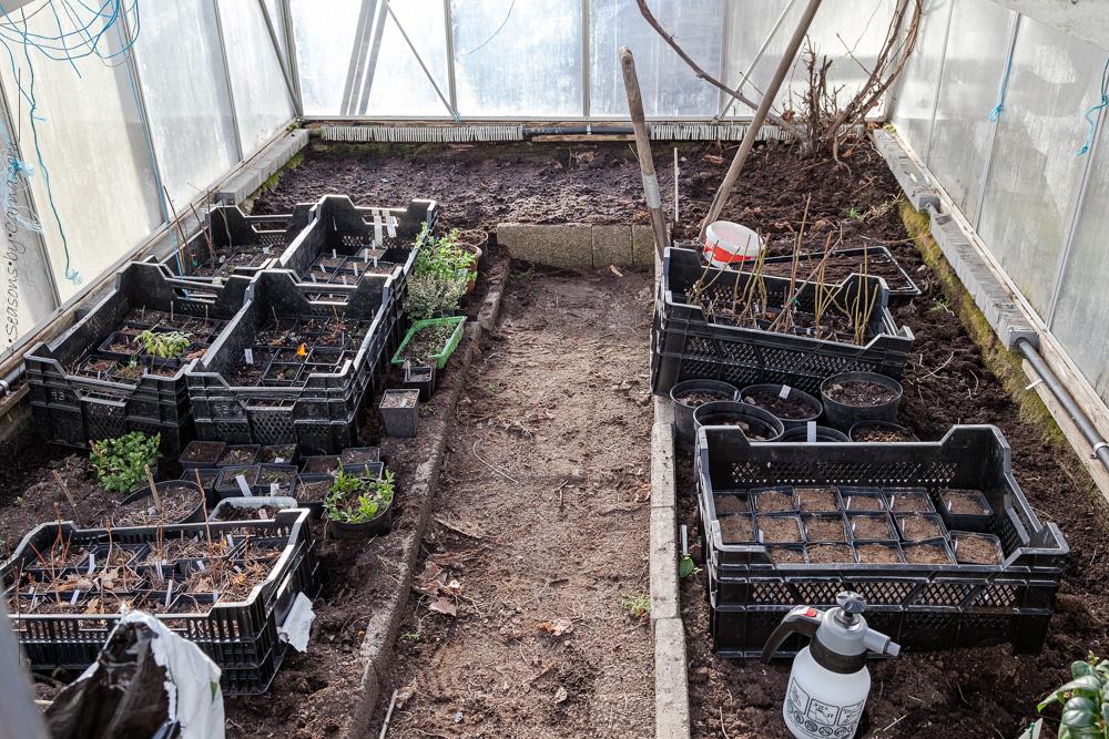 Växthuset efter omflytt och sådd