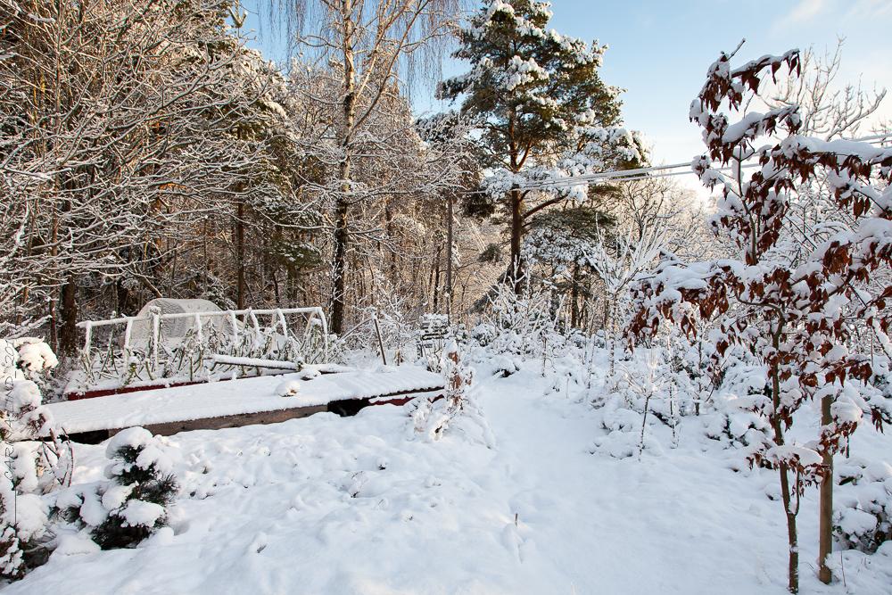 månadsbild December
