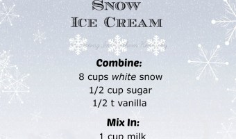 ** Snow Ice Cream **