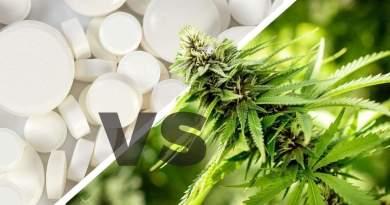 This Rehab Clinic Lets Patients Smoke Marijuana