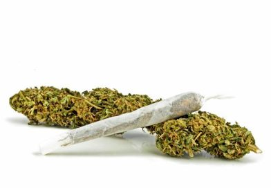 Federal Study Finds Marijuana 100X Less Toxic Than Alcohol, Safer Than Tobacco