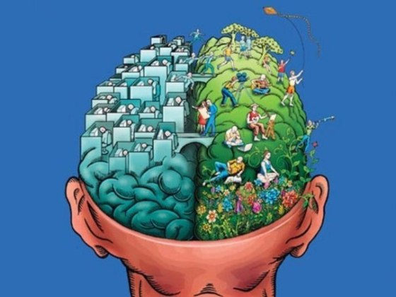 CEREBRO INTELIGENCIA CARTON