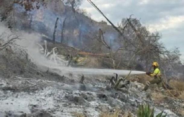 INCENDIO FORESTAL BAJO CONTROL BOMBERO