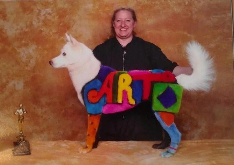 7-perro