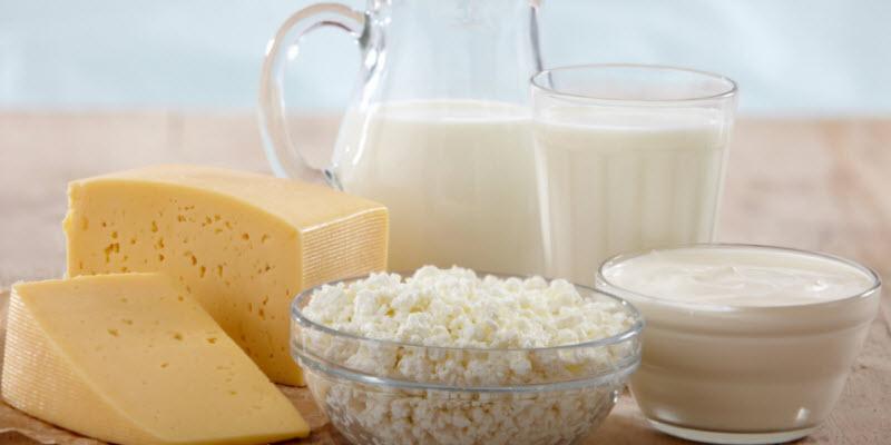 lacteos-productos