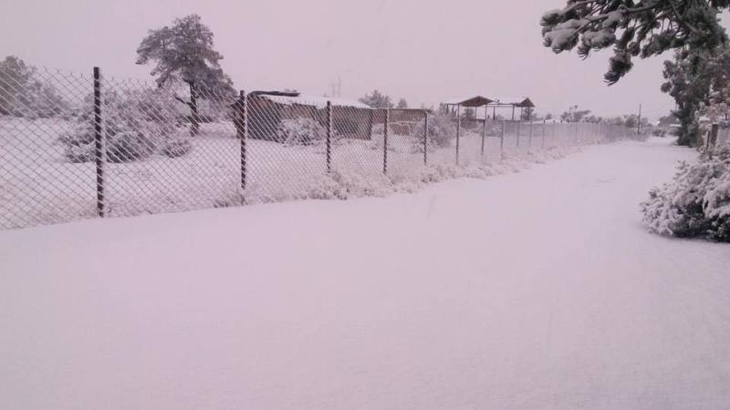 nevada-tecate-1