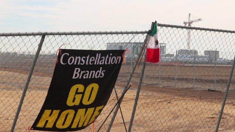Miles de bajacalifornianos rechazan la instalación de la planta cervecera de Constellation Brands en Mexicali, por el alto consumo de agua que demanda. Foto: Reporte Índigo