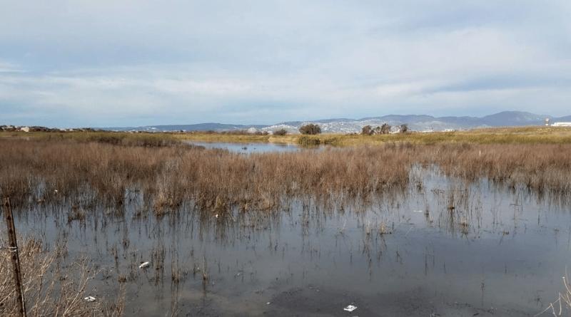 Arquitectos preparan denuncia penal vs culpables de derrame de aguas negras en Ensenada