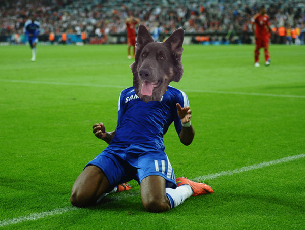 Didier Dogba celebrates another goal