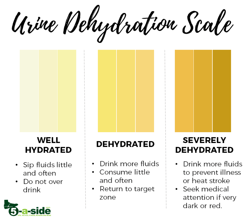 Urine Dehydration Scale Color Chart