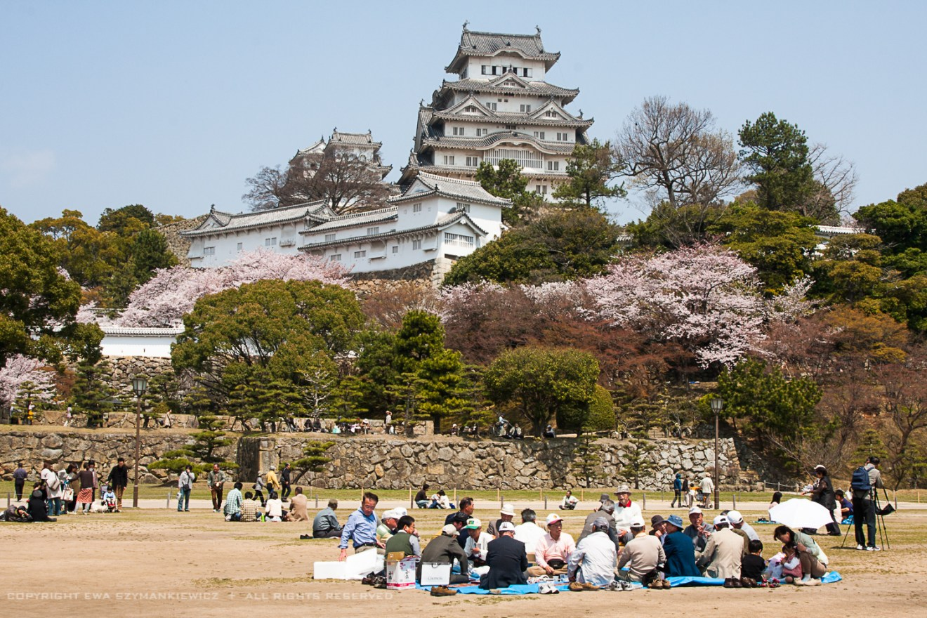 Picnic at the Himeji Castle, Japan