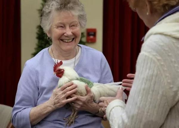A alegria de estar fazendo um trabalho que está protegendo as aves