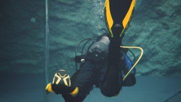 Aqua Lung Phazer Review