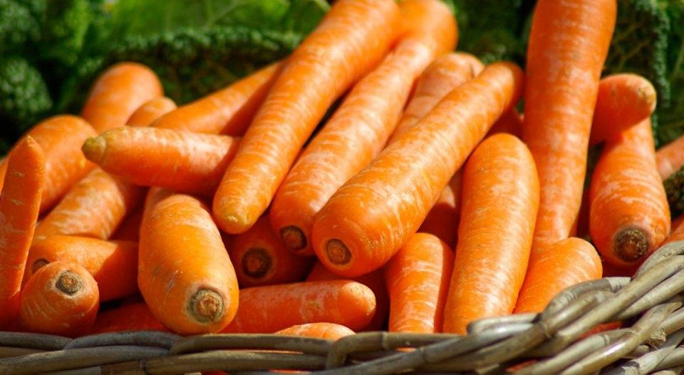 allotment_carrots