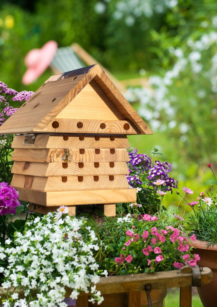 Gardening for wildlife – WIN a Solitary Bee Hive!