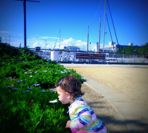 Parents Guide to Jack London Square