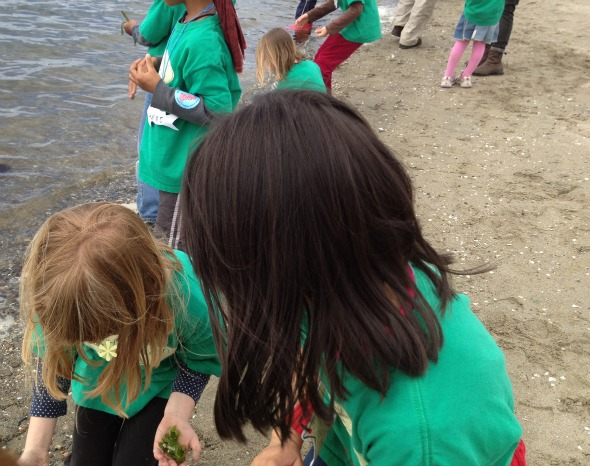 Crab cove for nature birthday parties