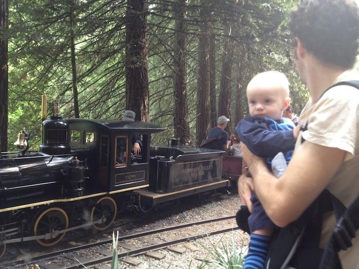 Tilden Park Steam Trains
