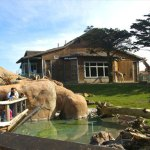 Ten special things to do at the SF Zoo