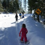 5 Snow play outings for Bay Area families