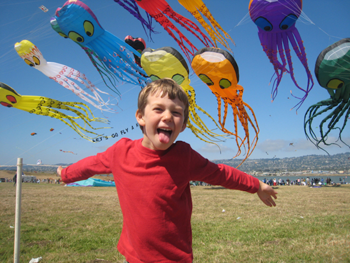 Berkeley Kite Festival