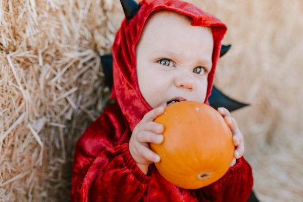 Piggie pumpkin patch party
