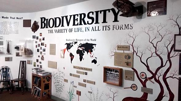 BiodiversitySulphurCreekMInnaKane
