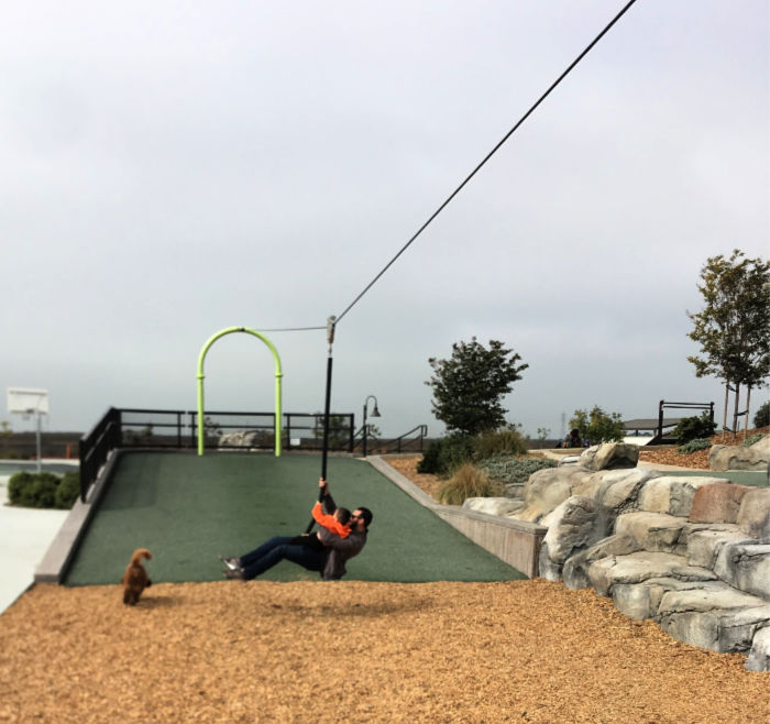 Zip Line at San Lorenzo Park (Adults and Kids can play)