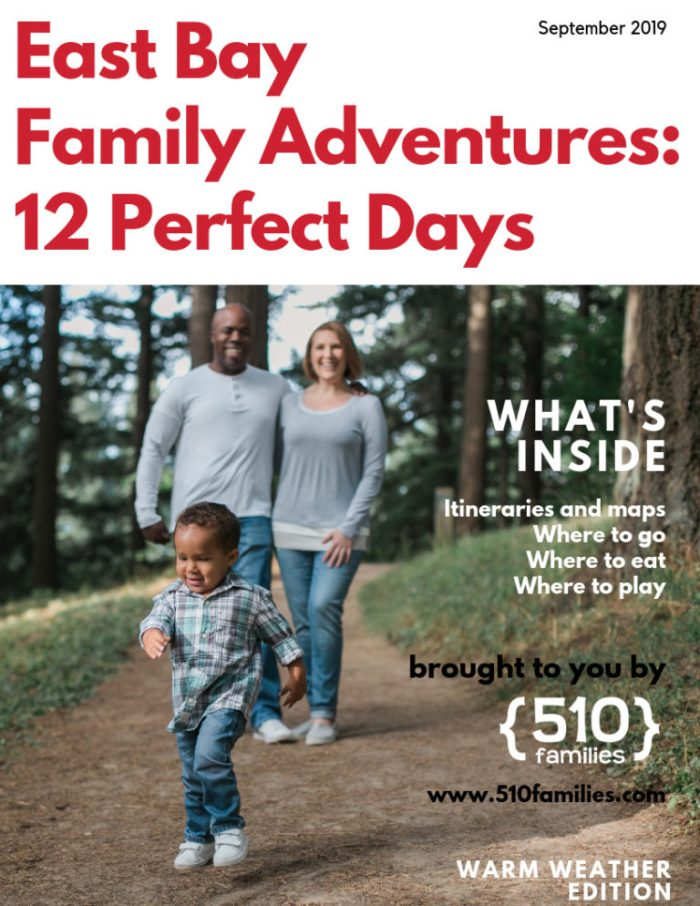 Ebook cover: East Bay Family Adventures by 510families