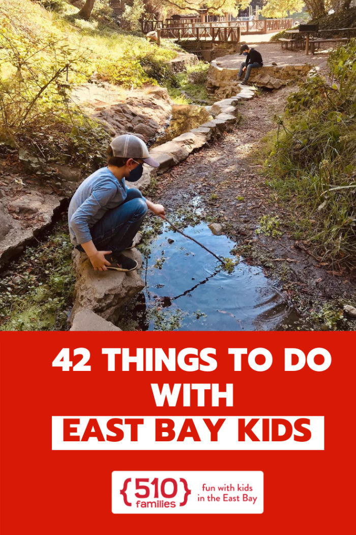 newcomers guide to the east bay