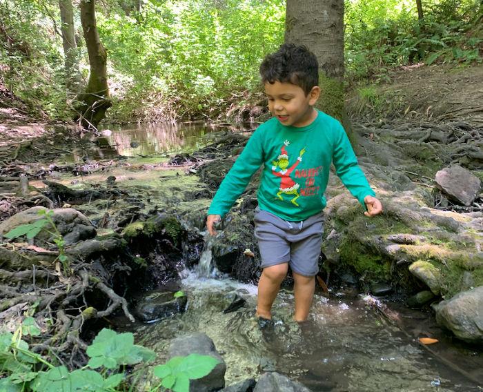 dipping toes in wildcat creek