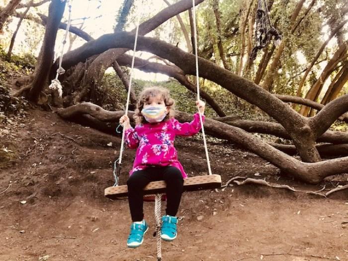 Bridgeview Trail Swings